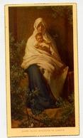 Santino - Quasi Oliva Speciosa In Campis - 5100 - A2 - Images Religieuses