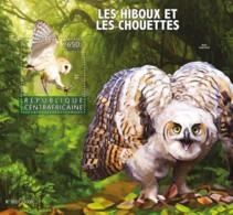 Central Africa 2015 Fauna Owls - Centraal-Afrikaanse Republiek