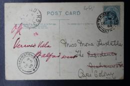 NATAL POSTCARD PIETERMARITZBURG -> GRAHAMSTOWN 15-11-1904   ESTCOURT - Natal (1857-1909)