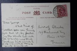 NATAL POSTCARD PIETERMARITZBURG -> PARIS  19-11-1904  UMGEHOWICK NATAL - Natal (1857-1909)