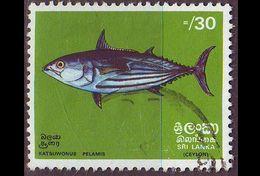 CEYLON SRI LANKA [1972] MiNr 0430 ( O/used ) Fische - Sri Lanka (Ceylan) (1948-...)