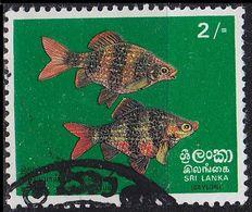 CEYLON SRI LANKA [1972] MiNr 0431 ( O/used ) Fische - Sri Lanka (Ceylan) (1948-...)