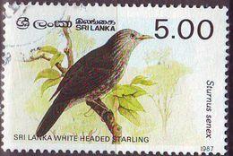 CEYLON SRI LANKA [1987] MiNr 0790 I ( O/used ) V�gel - Sri Lanka (Ceylan) (1948-...)