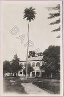 Brazzaville (Congo) - (Autrefois En A. E. F.) - Mairie (Daté Au Verso En 1936) - Congo Français - Autres