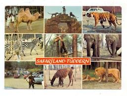 5135 SELFKANT - TÜDDERN, Safariland - Heinsberg