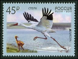 Russia 2019 - One National Bird Siberian Crane Europa CEPT Animal Nature Fauna Birds Cranes Stamp MNH - 2019