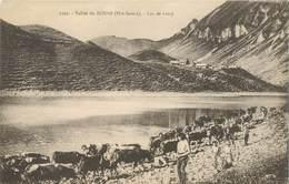 """CPA FRANCE 74 """"Vallée Du Borne, Lac De Lessy"""" - Autres Communes"""