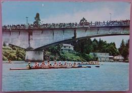 Regata En Rio Calle-Calle - Chile Valdivia - Canottaggio Rowing Aviron  Nv - Cile