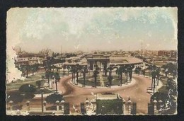 Egypt Old Picture Postcard Alexandria Stadium View Card - Alexandria