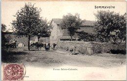52 - SOMMEVOIRE --  Ferme Ste Colombe - France