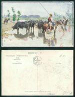 PORTUGAL - OUTROS [ 0377 ] - LISBOA - TOURADA CORRIDA TOROS  - RIBATEJO - ROQUE GAMEIRO - ESTADO - Other