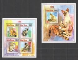 SS997 2013 GUINE GUINEA-BISSAU ANIMALS PETS DOMESTIC CATS GATOS 1KB+1BL MNH - Chats Domestiques