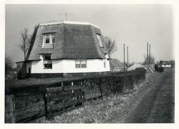 Bergschenhoek, Breggemolen Straatkant, Windmill, Afgeknotte Molen, Real Photo - Windmolens