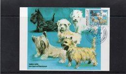 """:Monaco 1986 Carte Maximum Exposition Canine """"spéciale Terriers D'Ecosse"""" 02476 - Hunde"""