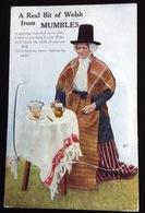 MUMBLES BELLE CPA SYSTEME VUES MULTIPLES DEPLIANT Femme Folklore - Pays De Galles