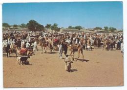 CP MOUSSORO, ( KANEM ), LE MARCHE AU BETAIL, PHOTO J. GABIN, TCHAD - Tchad