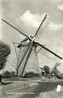 Rockanje, Korenmolen, Windmill, Real Photo V.d, Linden - Windmolens
