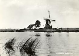 Hoogmade, Doesmolen, Poldermolen, Windmill, Real Photo H.G.A.Bank - Windmolens