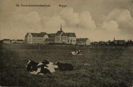 Seppe - Bosschenhoofd// St. Gerardus Retraitehuis (ander Zicht Met Koeien) 1915 - Nederland