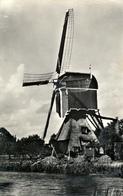 Vlist, Bon Repas, Poldermolen, Windmill, Real Photo - Windmolens