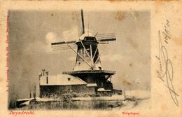 Zwijndrecht, Molen Welgelegen Met Sneeuw, Versteeg, Windmill - Windmolens