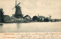 Zwammerdam, Palmboom, Zaagmolen, Windmill, De Rijn - Windmolens