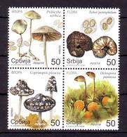 Serbia 2019 Y Flora Mushrooms Fungi Block Of 4 MNH - Serbie