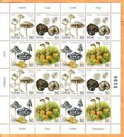 Serbia 2019 Y Flora Mushrooms Fungi Minisheet MNH - Serbie
