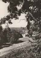 Haute-loire : TENCE : Vu De La Route Du Chambon-sur-lignon ( C.p.s.m. Photo. Véritable ) Grand Format - Autres Communes