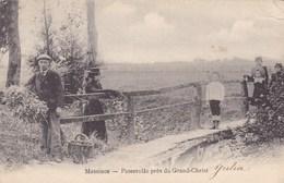 Mesen, Messines, Passerelle Près Du Grand Christ (pk57228) - Messines - Mesen