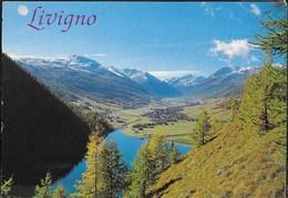 SVIZZERA - ANNULLO OSPIZIO BERNINA 06.09.1996 SU CARTOLINA LIVIGNO - Svizzera