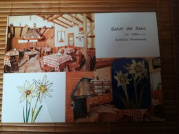 C. P.  ITALIE Saluti Dal Sauc Baracca Restaurant BUDOIA  Pordenone EDELWEISSnon Circulé C6 - Pordenone
