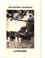 ENCART PUBLICITAIRE COLLECTION COLONIALE LAROUSSE - ELEPHANTS - Publicités
