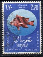 XP4312 - SOMALIA 1962 , Posta Aerea Serie Yvert N. 17  Usata .  Pesce Fish - Somalia (1960-...)