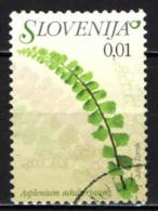 SLOVENIA - 2007 - Flora: Asplenium Adulterinum - USATO - Slovenia