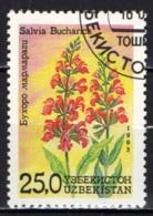 UZBEKISTAN - 1993 - SALVIA BUCHARICA - USATO - Uzbekistan
