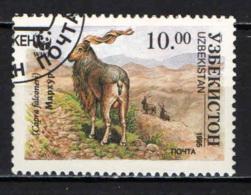 UZBEKISTAN - 1995 - CAPRA FALCONIERI - USATO - Uzbekistan