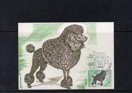 """:Monaco 1987 Carte Maximum Expo Canine Dog """"le Caniche"""" 02488 - Hunde"""