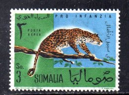 XP4320 - SOMALIA 1960 , Posta Aerea Serie Yvert N. 7 ***  Leopardo - Somalia (1960-...)