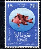 XP4322 - SOMALIA 1962 , Posta Aerea Serie Yvert N. 17 ***  Pesci Fish - Somalia (1960-...)