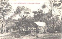 ES VILADRAU - ATV 796 - Carboneros En El Bosque - Les Charbonniers Dans Le Bois - Attelages - Animée - Belle - Gerona