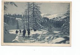 BEUIL - Skieurs Au Plateau Saint-Jean - France