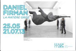 ÉVÉNEMENT EXPOSITION MUSÉE D' ART MODERNE LYON DANIEL FIRMAN LA MATIÈRE GRISE ÉLÉPHANT VOLANT DIF. CART'COM - Expositions