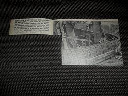 """Origineel Knipsel ( 2532 ) Uit Tijdschrift """" Ons Volk """"  1934 :  Ossegem  ( Molenbeek - Saint - Jean ) - Vieux Papiers"""