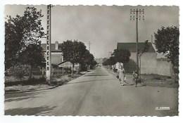 50 - BARNEVILLE-SUR-MER - Carte N° 50.031.17. - Avenue De La Gare - CPSM - Barneville