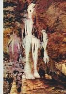 C.P.- PHOTO - LES GROTTES DE SAINT CEZAIRE - LE SQUELETTE - 1376 - MAR - - France