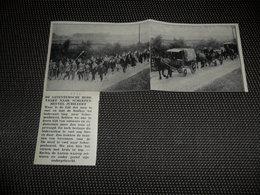 """Origineel Knipsel ( 2543 ) Uit Tijdschrift """" Ons Volk """"  1934 :  Bedevaart  Saventem  Zaventem  Scherpenheuvel - Vieux Papiers"""