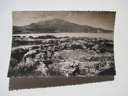 CPSM Algérie Tipasa  Grand Monument Funéraire De La Nécropole Occidentale Et Le Chénoua 1950 - Algérie