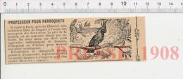 Presse 1908 Professeur Pour Perroquet Institution Libre De Langues Le Châtelet Paris Oiseau Qui Parle 216E10 - Vieux Papiers