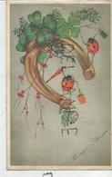 Deux Coccinelles, Lampions, Parapluie à Pois, Fer à Cheval, Trèfles. - Animaux Habillés
